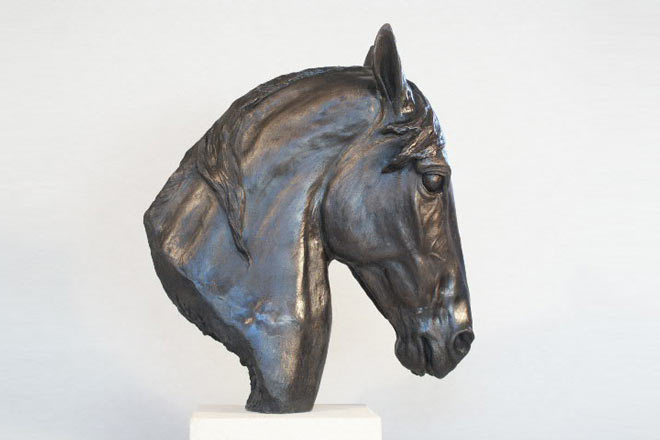 Horse Head III : A study by Kate Woodlock