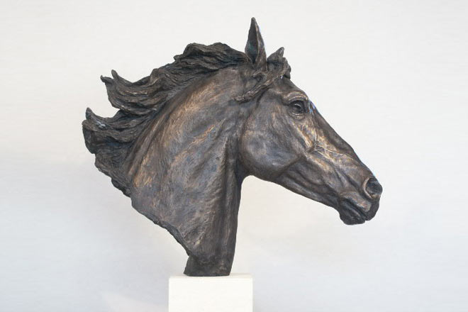 Horse Head II : A study by Kate Woodlock