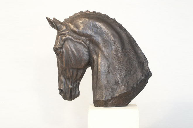 Horse Head I : A study by Kate Woodlock