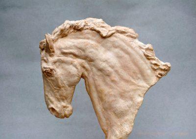 horse-head-IV_2