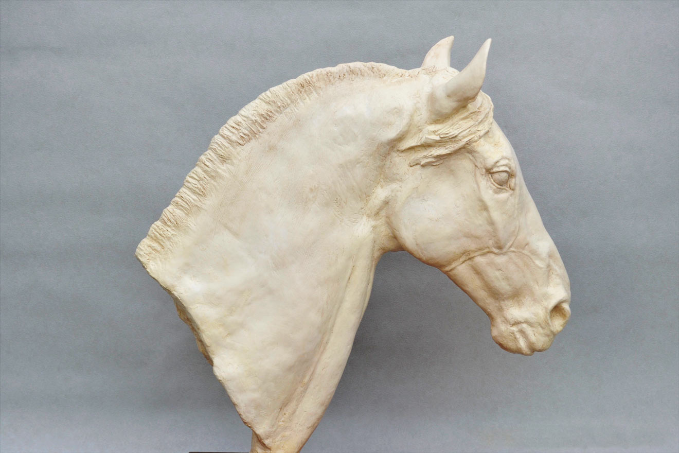 Horse Head V - Image 1 : A study in jesmonite by Kate Woodlock