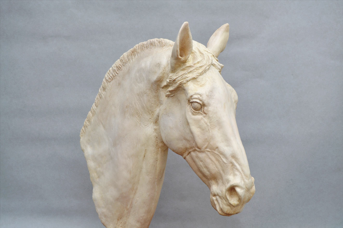 Horse Head V - Image 2 : A study in jesmonite by Kate Woodlock