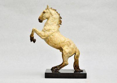 rearing-spanish-horse_2
